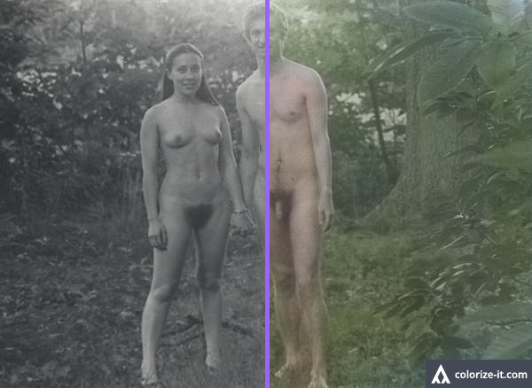 colorize-compare_forest.png